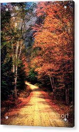 Country Road Acrylic Print by Brenda Giasson