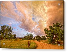 Country Road Into The Storm Front Acrylic Print by James BO  Insogna