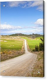 Country Road Otago New Zealand Acrylic Print by Colin and Linda McKie