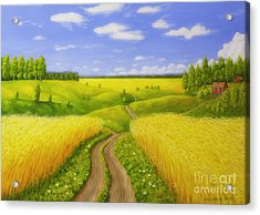 Country Road Acrylic Print by Veikko Suikkanen