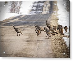 County Road Crew Acrylic Print by Thomas Young