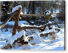 Covered In Snow Acrylic Print by Fiona Kennard