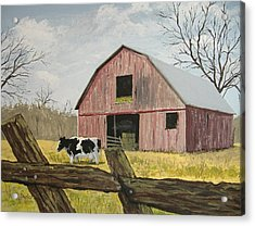 Cow And Barn Acrylic Print by Norm Starks