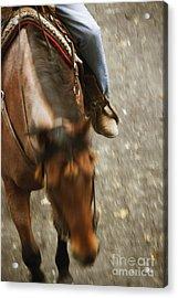 Cowboy Acrylic Print by Margie Hurwich
