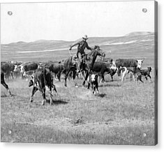 Cowboy Western Cattle Drive Vintage  Acrylic Print by Retro Images Archive