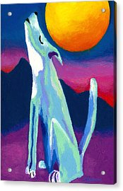 Coyote Azul Acrylic Print by Stephen Anderson