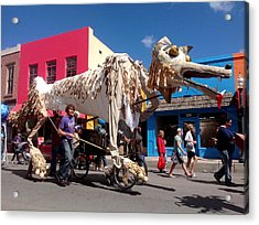 Coyote On Parade Acrylic Print by Feva  Fotos
