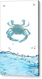 Crab Strolling Around Acrylic Print by Art Spectrum