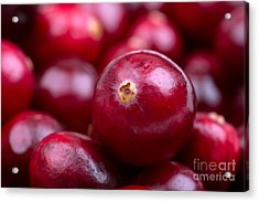 Cranberry Closeup Acrylic Print by Jane Rix