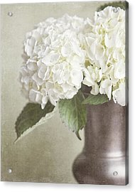 Cream Hydrangea In A Bronze Vase Still Life Acrylic Print by Lisa Russo