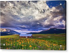 Crested Butte Morning Storm Acrylic Print by Darren  White