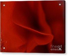 Crimson Acrylic Print by Cassandra Buckley