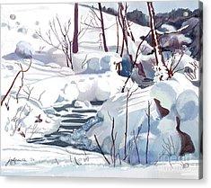 Crooked Little Creek Acrylic Print by Joan A Hamilton