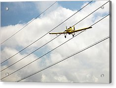 Crop Duster And Electricity Power Lines Acrylic Print by Jim West