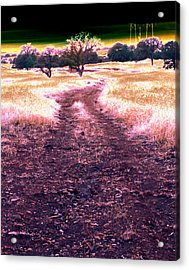 Crossing That Dark Horizon Isn't Unfamiliar To Me 2010 Acrylic Print by James Warren