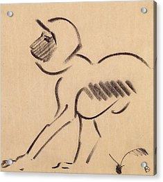 Crouching Monkey Acrylic Print by Henri Gaudier-Brzeska
