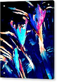 Crystal C Abstract Acrylic Print by Bill Caldwell -        ABeautifulSky Photography
