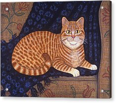 Curry The Cat Acrylic Print by Linda Mears