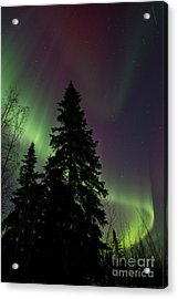 Curtain Of Colours Acrylic Print by Priska Wettstein