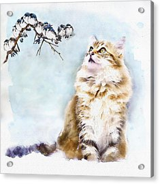 Cute Cat On The Lurk Acrylic Print by Marian Voicu