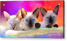Cute Siamese Kittens Cats  Acrylic Print by Svetlana Novikova
