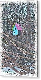 Cutest Little Birdhouse Acrylic Print by Donna Brown