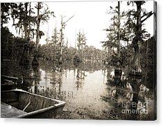 Cypress Swamp Acrylic Print by Scott Pellegrin