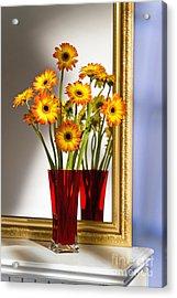 Daisies In Red Vase Acrylic Print by Tony Cordoza