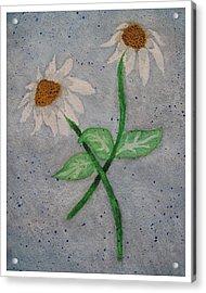 Daisies In Stormy Skies Acrylic Print by Jennifer Schwab