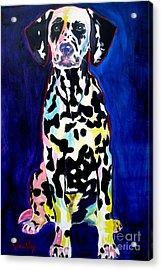 Dalmatian - Polka Dots Acrylic Print by Alicia VanNoy Call