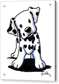 Dalmatian Puppy Acrylic Print by Kim Niles
