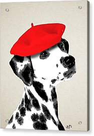 Dalmation With Red Beret Acrylic Print by Kelly McLaughlan