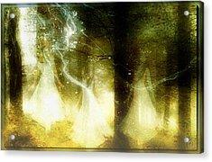 Dance Of The Fairies Acrylic Print by Gun Legler
