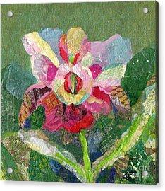 Dancing Orchid II Acrylic Print by Shadia Derbyshire