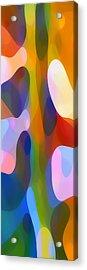 Dappled Light Panoramic Vertical 2 Acrylic Print by Amy Vangsgard