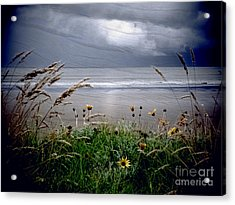 Dark Outlook Acrylic Print by Karen Lewis