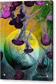 Dark Side Of The Moon 5d24939 Painterly M111 Acrylic Print by Wingsdomain Art and Photography