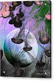 Dark Side Of The Moon 5d24939 Painterly P180 Acrylic Print by Wingsdomain Art and Photography