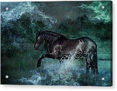 Dark Water Acrylic Print by Pamela Hagedoorn