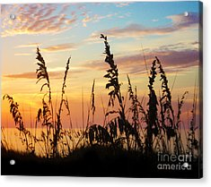 Dawn Acrylic Print by Megan Dirsa-DuBois