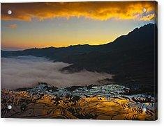 Dawn Of Terraced Rice Field Acrylic Print by Jason KS Leung