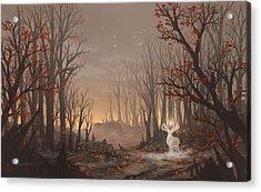 Dawn Spirit Acrylic Print by Cassiopeia Art