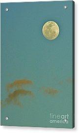 Day Moon Acrylic Print by Lynda Dawson-Youngclaus