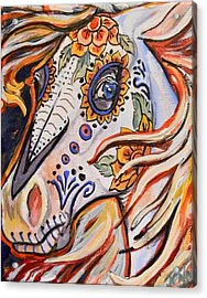 Day Of The Dead Horse Acrylic Print by Jenn Cunningham