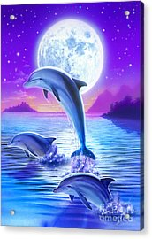 Day Of The Dolphin Acrylic Print by Robin Koni