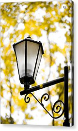 Daylight - Featured 3 Acrylic Print by Alexander Senin