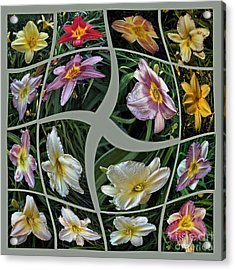 Daylily's Flying Away Collage Acrylic Print by ImagesAsArt Photos And Graphics