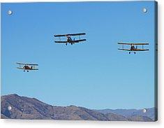 De Havilland Dh 82a Tiger Moth Acrylic Print by David Wall