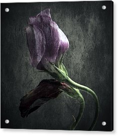 Dead Or Alive Acrylic Print by Stelios Kleanthous