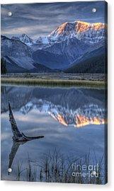 Deadwood At Beauty Creek Sunrise Acrylic Print by Brian Stamm